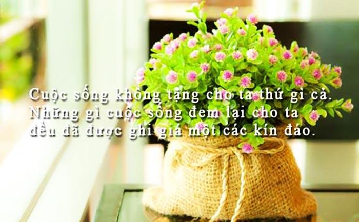 tong-hop-stt-va-cau-noi-hay-ve-cuoc-song-buon-chan (5)